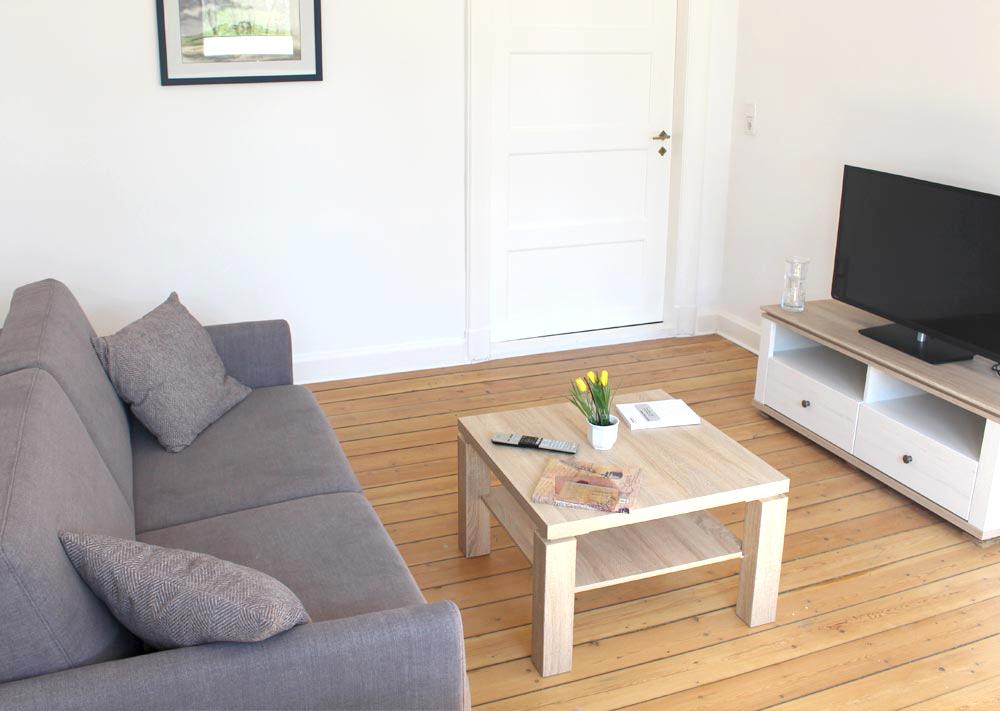 Wohnzimmer mit Schlafsofa und Flat-TV